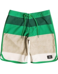 Dc boardshorts advisory kids