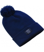 Dickies gorro edgeworth