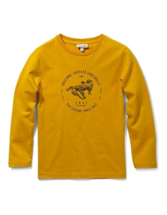 Lacoste sweatrshirt coing
